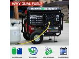 Durostar DS10000EH Dual Fuel Portable Generator Photo 2